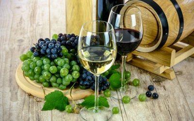 Les métiers du vin et des spiritueux : Comment recruter des personnes efficaces ?